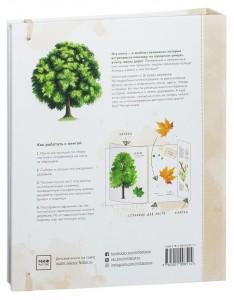 фото страниц Мой гербарий. Листья деревьев #11