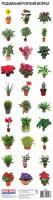 Книга Розрізний матеріал 'Кімнатні рослини'