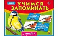 Учимся запоминать 'Мемо. Птицы' (ИН-1895)