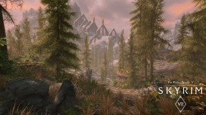 скриншот The Elder Scrolls 5: Skyrim VR PS4 (русская версия) #4