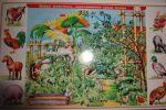 фото Набор карточек к электровикторине 'Детям о животных' (2154) #4