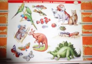 фото Набор карточек к электровикторине 'Детям о животных' (2154) #3