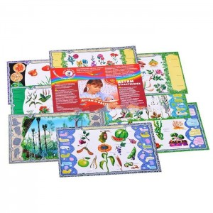 фото Набор карточек к электровикторине 'Детям о растениях' (2963) #3