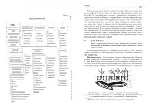 фото страниц Атлас. Анатомия и физиология человека #5