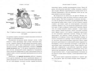 фото страниц Хрупкие жизни. Истории кардиохирурга о профессии, где нет места сомнениям и страху #7