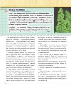 фото страниц Открываем тайны леса #10