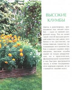 фото страниц Декоративные детали сада #5