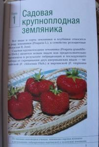 фото страниц Вкусные ягоды в вашем саду #5