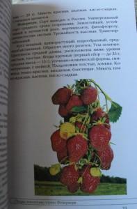 фото страниц Вкусные ягоды в вашем саду #6