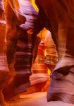 Настенный обогреватель Трио 'Каньон' (00206)