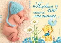 Книга Первый год нашего малыша