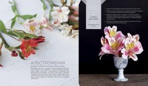 фото страниц Цветочные рецепты. 100 стильных букетов на все случаи жизни #6