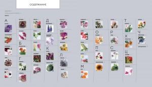 фото страниц Цветочные рецепты. 100 стильных букетов на все случаи жизни #3