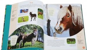 фото страниц Красочный мир животных #4