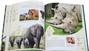 фото страниц Красочный мир животных #6