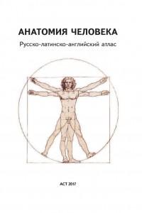 фото страниц Анатомия человека. Русско-латинско-английский атлас #2