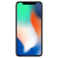 Смартфон Apple iPhone X 256GB Silver (MQAG2)