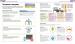 фото страниц Как помочь ребенку повзрослеть. Иллюстрированное руководство для родителей по переходному возрасту #7