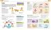 фото страниц Как помочь ребенку повзрослеть. Иллюстрированное руководство для родителей по переходному возрасту #6