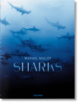 Книга Sharks. Face-to-Face with the Ocean's Endangered Predator