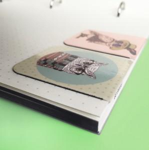 фото Набор магнитных закладок 'Гламурные совы' (2 шт.) #9