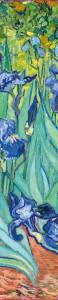фото Обложка пластиковая универсальная. Ван Гог. Ирисы (маленький формат) (Арте) #2