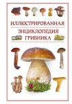 Книга Иллюстрированная энциклопедия грибника