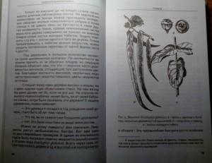 фото страниц Занимательная ботаника #3