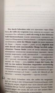 фото страниц Немецкий с Вильгельмом Гауфом. Холодное сердце = Wilhelm Hauff. Das kalte Herz #2
