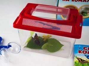 фото Мисливці на комах. Набір для дітей, що люблять природу #5