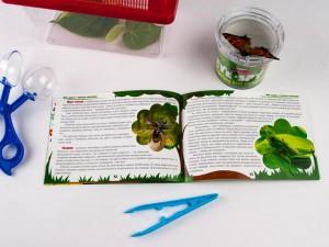 фото Мисливці на комах. Набір для дітей, що люблять природу #6