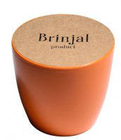 Подарок ГорщикBrinjal 'EcoStick' для рослин, зґрунтомі добривом (помаранчевий)
