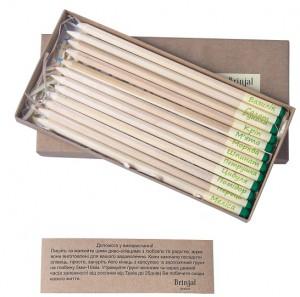 фото Набір 12 кольорових олівців Brinjal 'Ecostick': чарівні олівці з насінням рослин #2