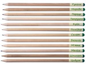фото Набір 12 кольорових олівців Brinjal 'Ecostick': чарівні олівці з насінням рослин #4