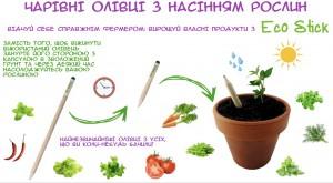фото Набір 6 кольорових олівців Brinjal 'Ecostick': чарівні олівці з насінням рослин #14