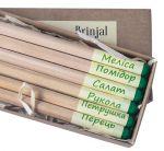 Подарок Набір 6 кольорових олівців Brinjal 'Ecostick': чарівні олівці з насінням рослин