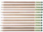 фото Набір 6 кольорових олівців Brinjal 'Ecostick': чарівні олівці з насінням рослин #3