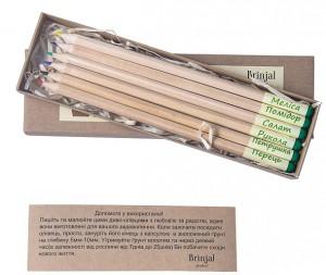 фото Набір 6 кольорових олівців Brinjal 'Ecostick': чарівні олівці з насінням рослин #2