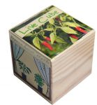 Подарок Набір для вирощування Brinjal 'Live Cube' гострий перчик