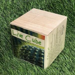 фото Набір для вирощування Brinjal 'Live Cube' кактус #3