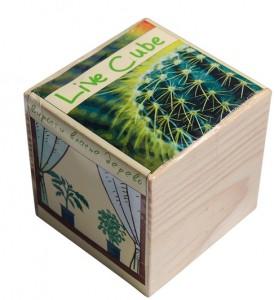 Подарок Набір для вирощування Brinjal 'Live Cube' кактус