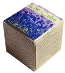 фото Набір для вирощування Brinjal 'Live Cube' лаванда #3
