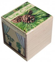 Подарок Набір для вирощування Brinjal 'Live cube' сосна звичайна