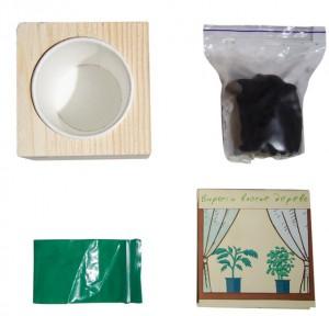фото Набір для вирощування Brinjal 'Live Cube' ягоди Годжи #3