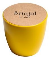 Подарок ГорщикBrinjal 'EcoStick' для рослин, зґрунтомі добривом (жовтий)