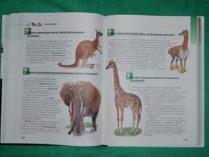 фото страниц Что? Зачем? Почему? Большая книга вопросов и ответов #3