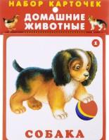Книга Домашние животные