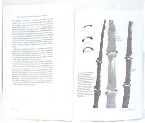 фото страниц Японская живопись тушью в стиле суйбоку #4