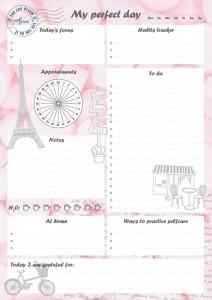 Ежедневник LifeFLUX 'Daily Planner My perfect day', розовый (LFDAEPPI006)