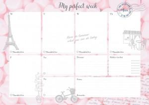 Еженедельник LifeFLUX 'Weekly My perfect day', розовый (LFWEEPPI005)